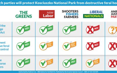 NSW Kosciuszko feral horse party policies revealed